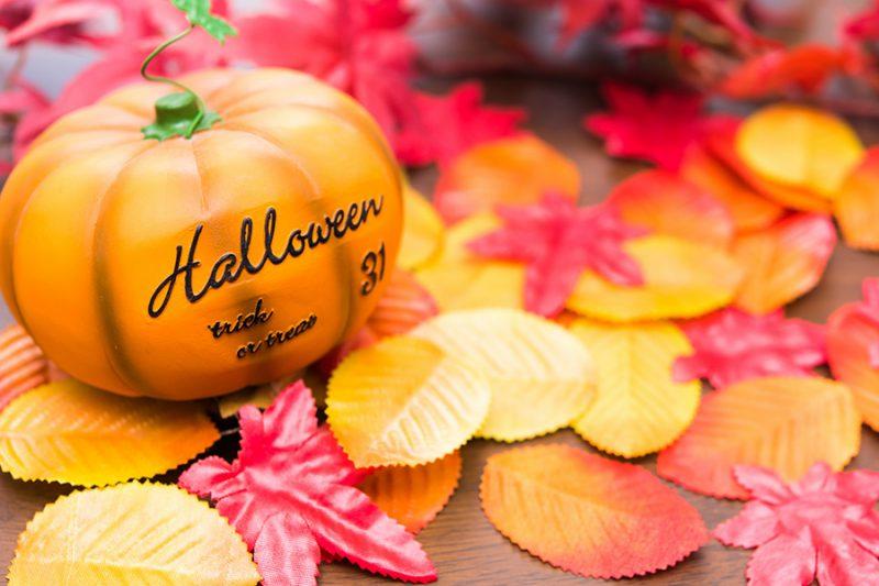 ハロウィンのかぼちゃのイメージ写真