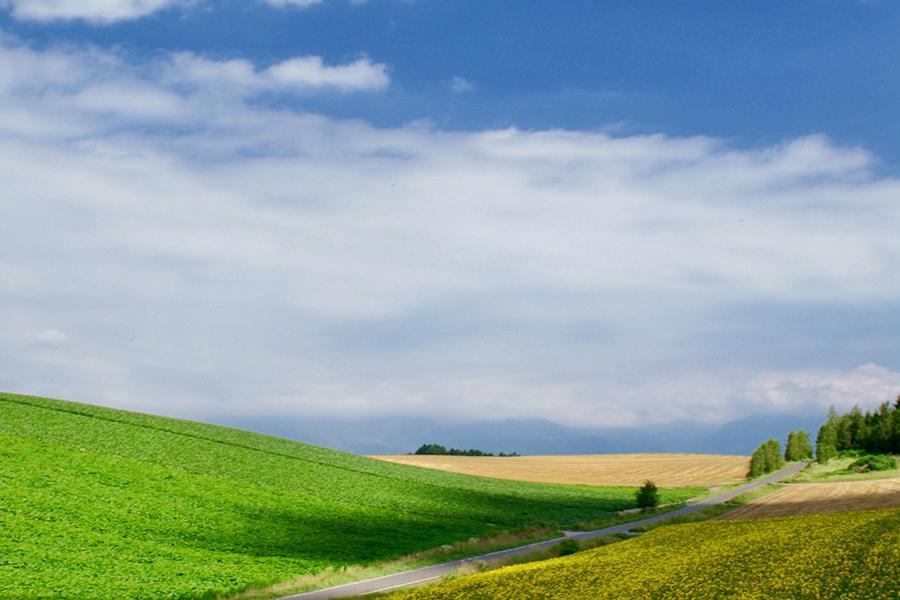 夏空のイメージ写真