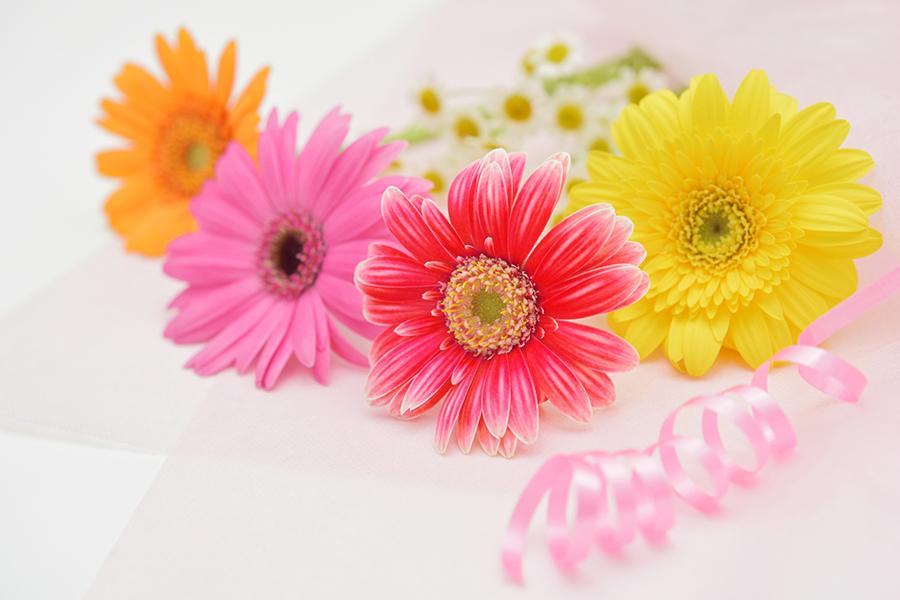 お花とリボンで感謝の気持ちを表現した写真